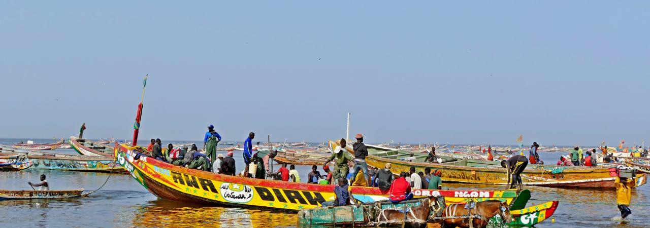 Excursion pêcheurs de Mbour
