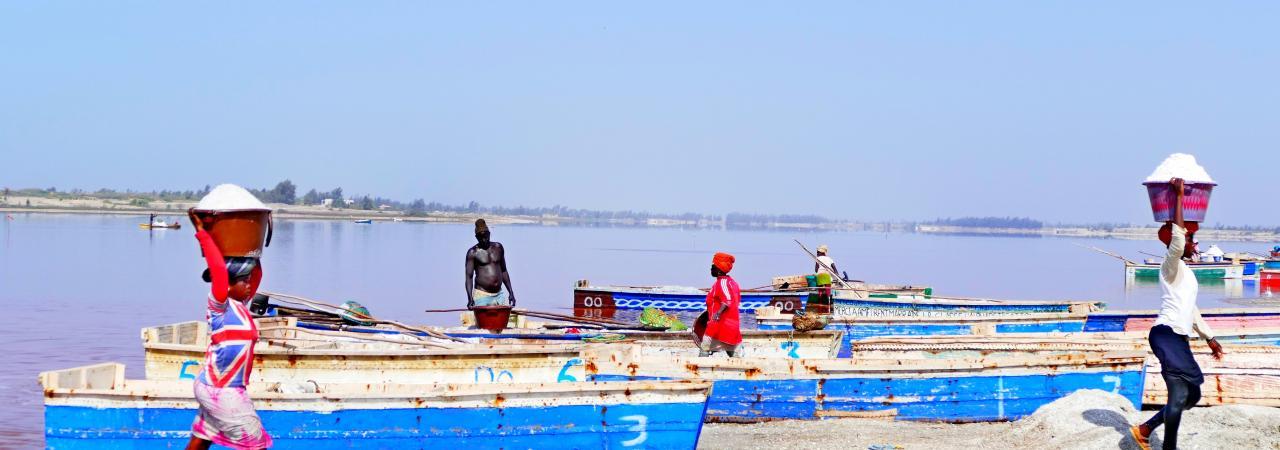 Excursion Dakar-Gorée et le Lac Rose