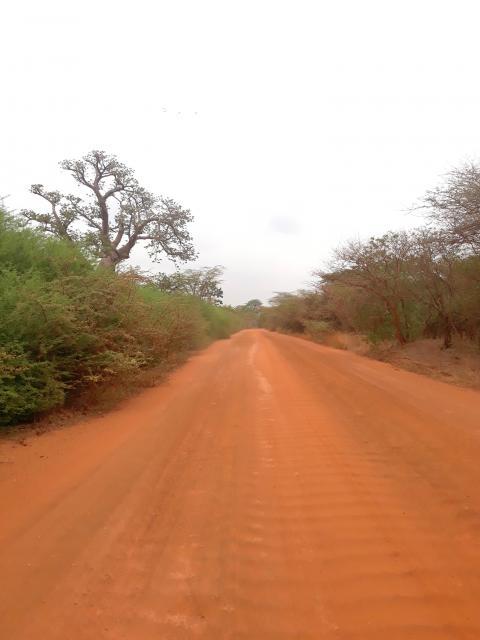 Image de l'excursion 1