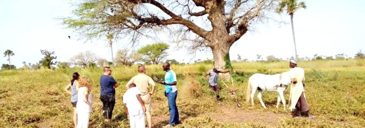 Découverte de villages de brousses typiques et l'îIe aux coquillages
